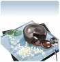 Moelleux au chocolat 100 g (Pièce)
